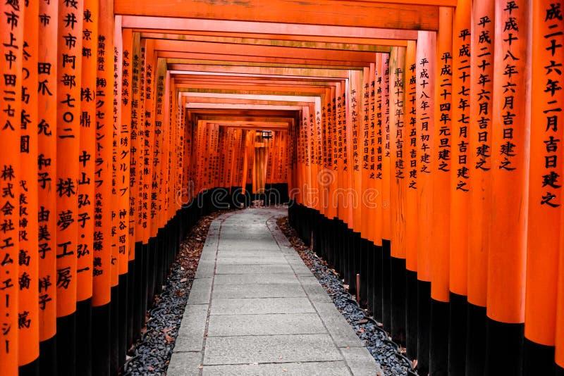 Nigdy Kończyć Tori bramy Fushimi Inari Taisha obraz royalty free