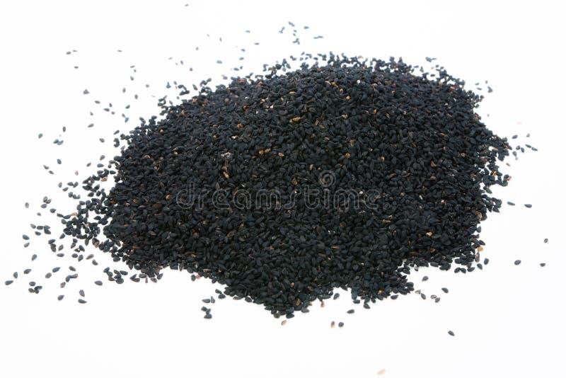 Nigella czerni ziarno fotografia stock