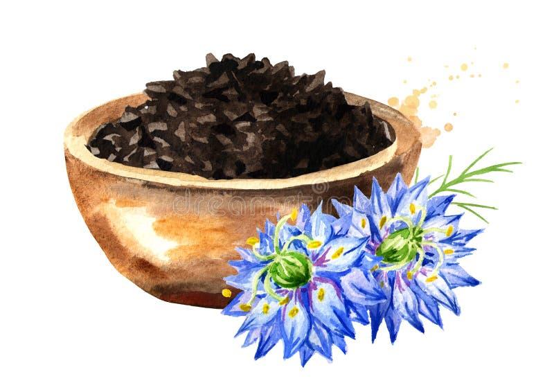 Nigella sativa o flor de hinojo, coriandro romano, comino negro, alcaravea blackseed, negra, persicum de Bunium en el cuenco wate ilustración del vector