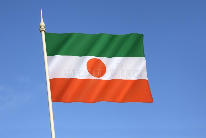 Niger bandery obraz royalty free