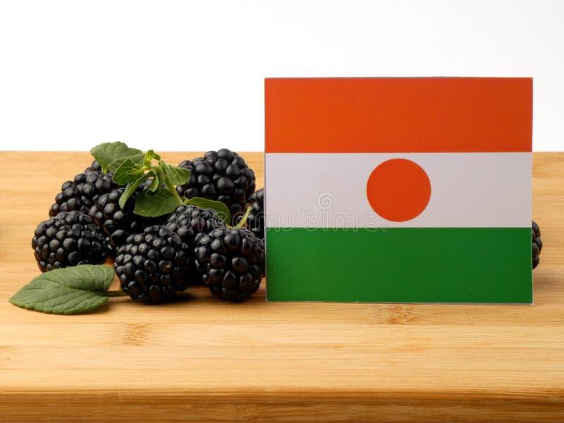 Niger flaga na drewnianym panelu z czernicami odizolowywać na whi zdjęcie royalty free