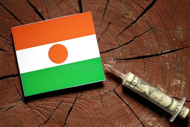 Niger flaga na fiszorku z strzykawki wstrzykiwania pieniądze zdjęcia stock