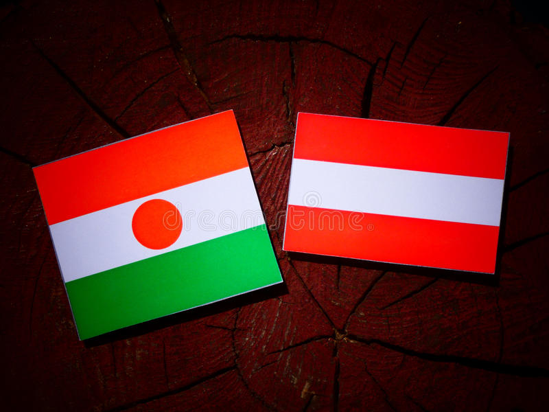 Niger flaga z austriak flaga na drzewnym fiszorku obraz royalty free