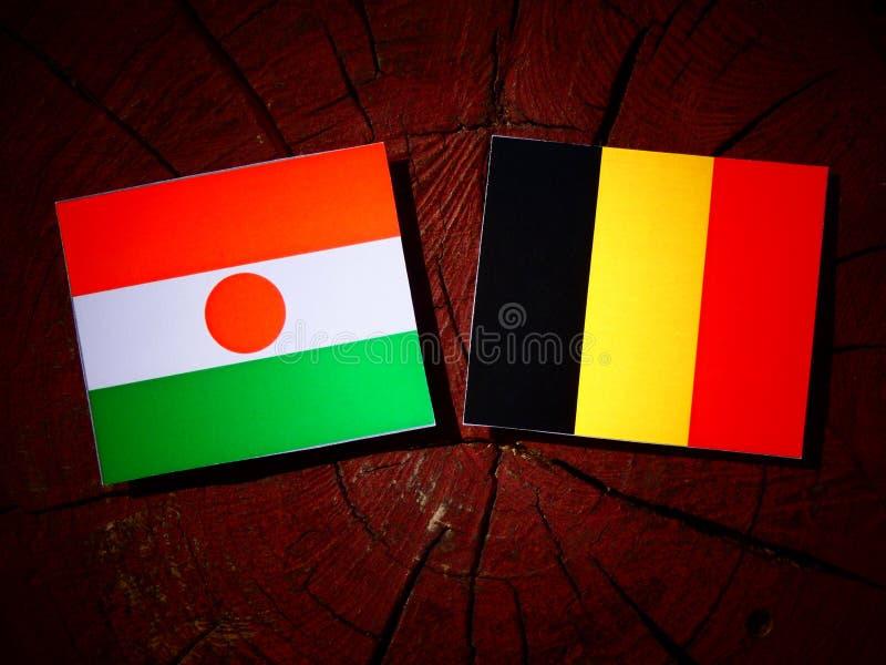 Niger flaga z belg flaga na drzewnym fiszorku odizolowywającym obraz stock