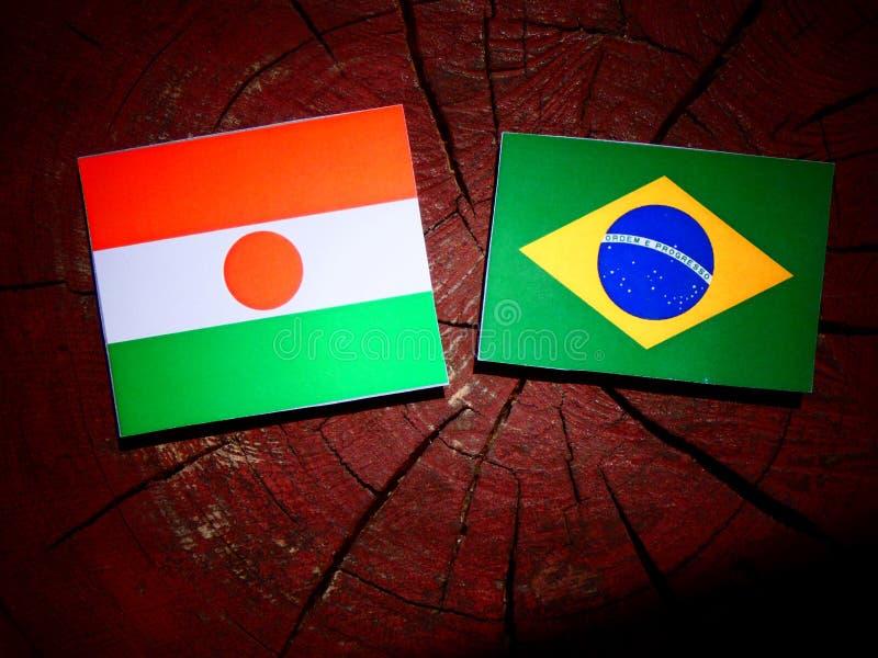 Niger flaga z brazylijczyk flaga na drzewnym fiszorku odizolowywającym obrazy stock