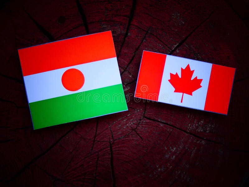 Niger flaga z kanadyjczyk flaga na drzewnym fiszorku odizolowywającym obrazy stock