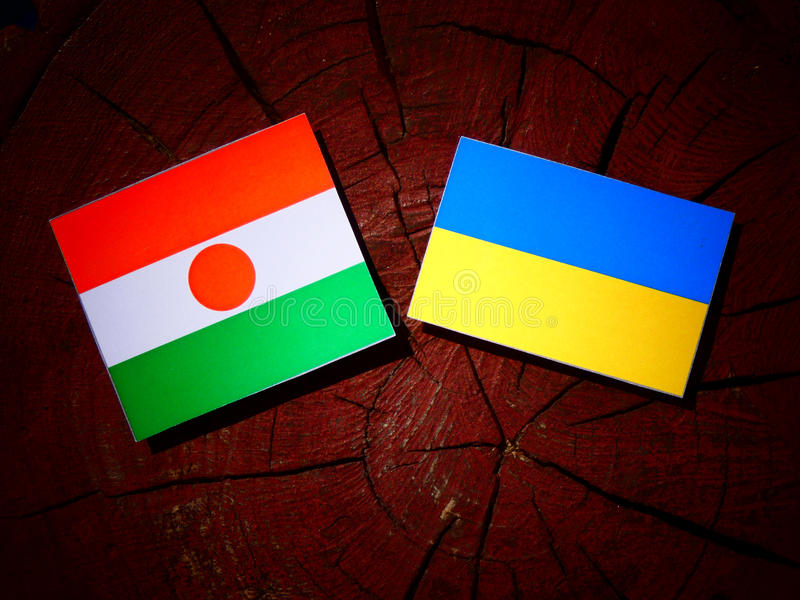 Niger flaga z kniaź flaga na drzewnym fiszorku odizolowywającym zdjęcie royalty free
