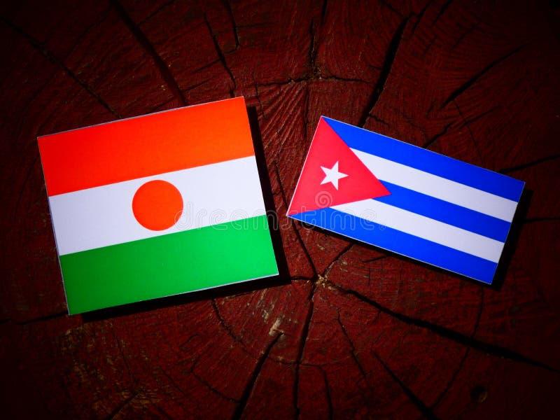 Niger flaga z kubańczyk flaga na drzewnym fiszorku odizolowywającym zdjęcie royalty free