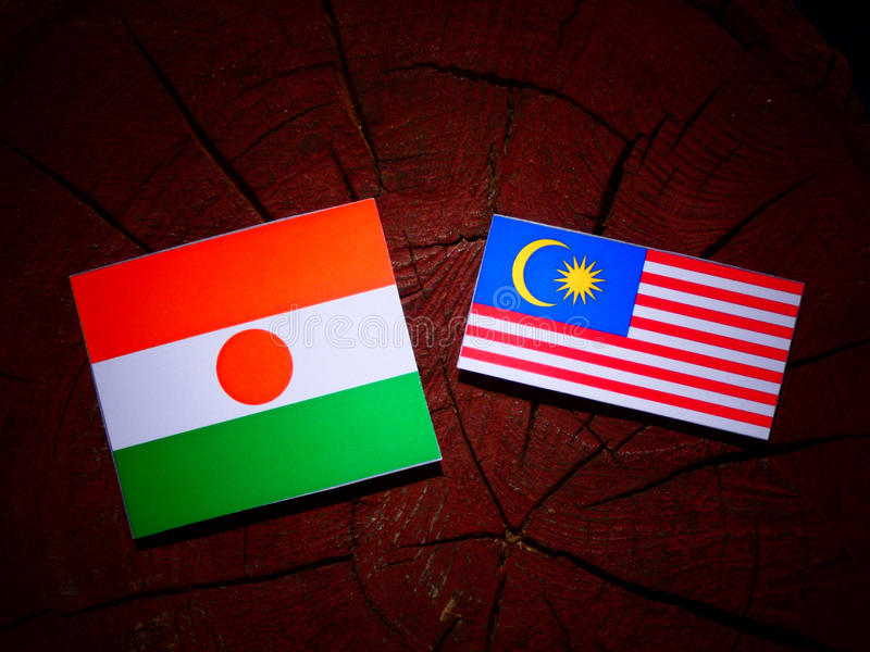 Niger flaga z malezyjczyk flaga na drzewnym fiszorku odizolowywającym fotografia royalty free