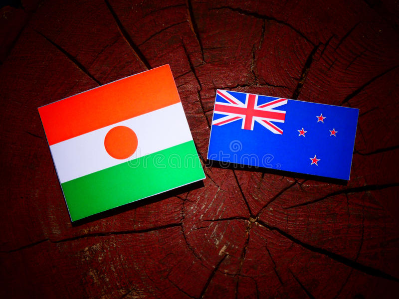 Niger flaga z Nowa Zelandia flaga na drzewnym fiszorku odizolowywającym obraz stock