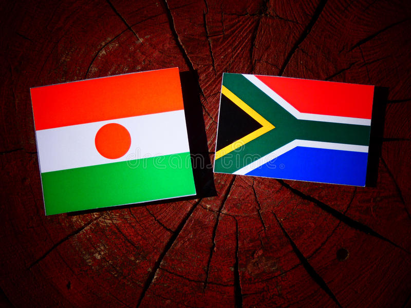Niger flaga z południe - afrykanin flaga na drzewnym fiszorku odizolowywającym zdjęcie stock