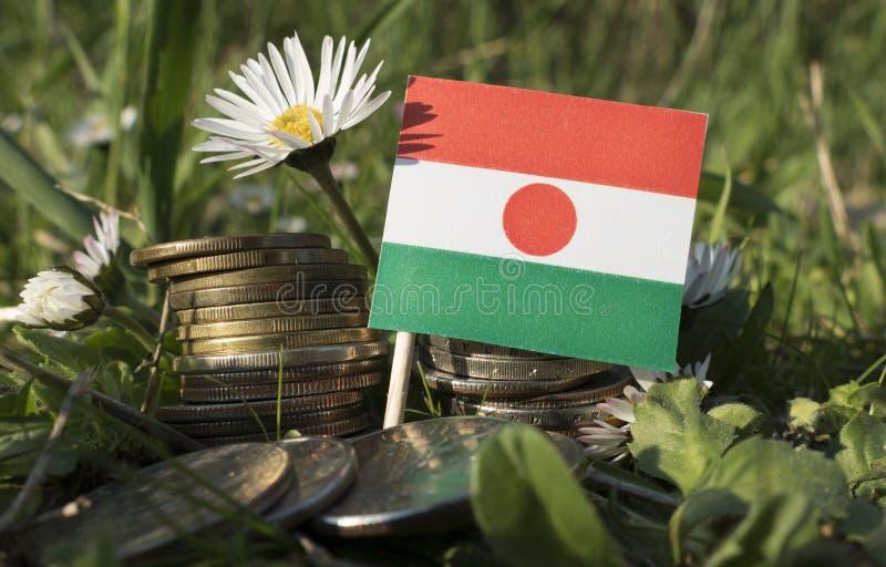 Niger flaga z stertą pieniądze monety z trawą fotografia royalty free