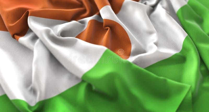 Niger flaga zakończenia Napuszony Pięknie Macha Makro- strzał zdjęcia royalty free