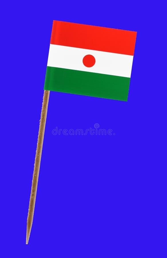 Niger zaznacza, z zieleń ekranem dla chromakey fotografia stock