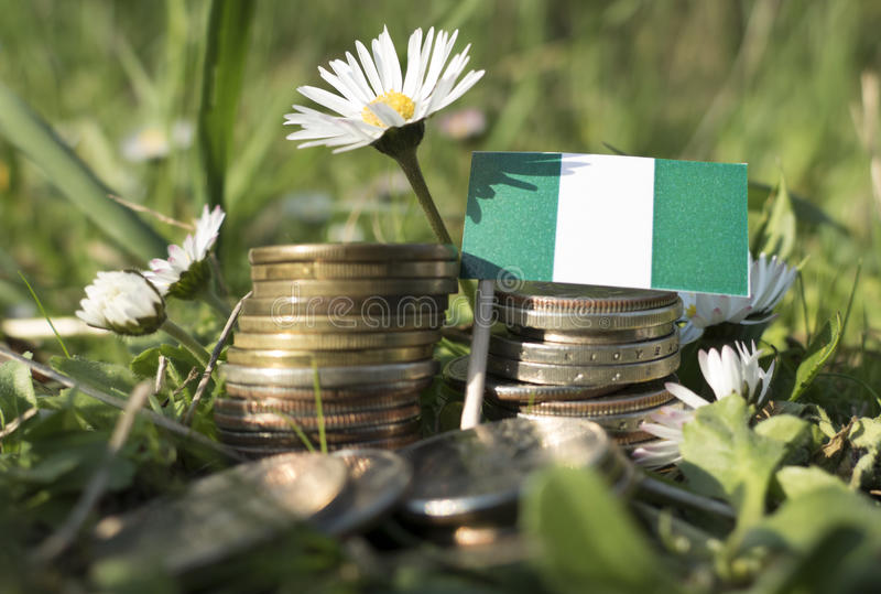 Nigerian flag with stack of money coins with grass royalty free stock images