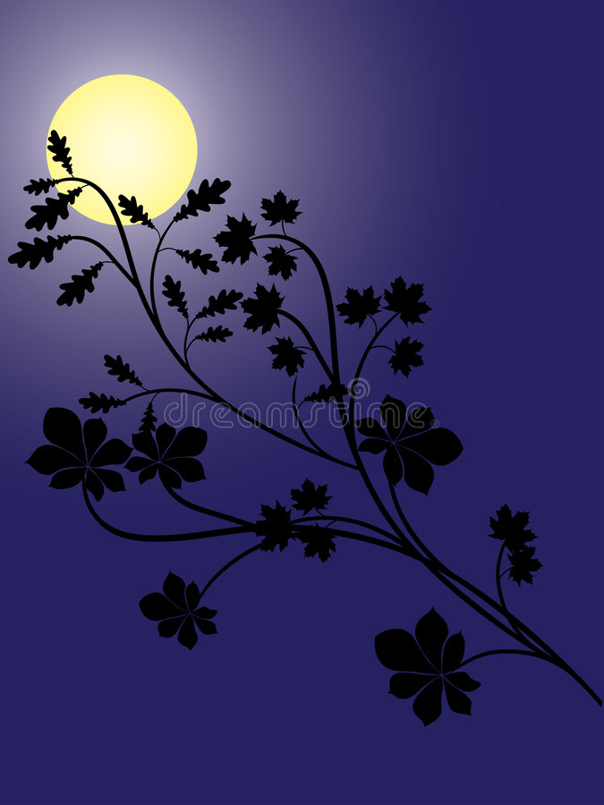 Night royalty free illustration
