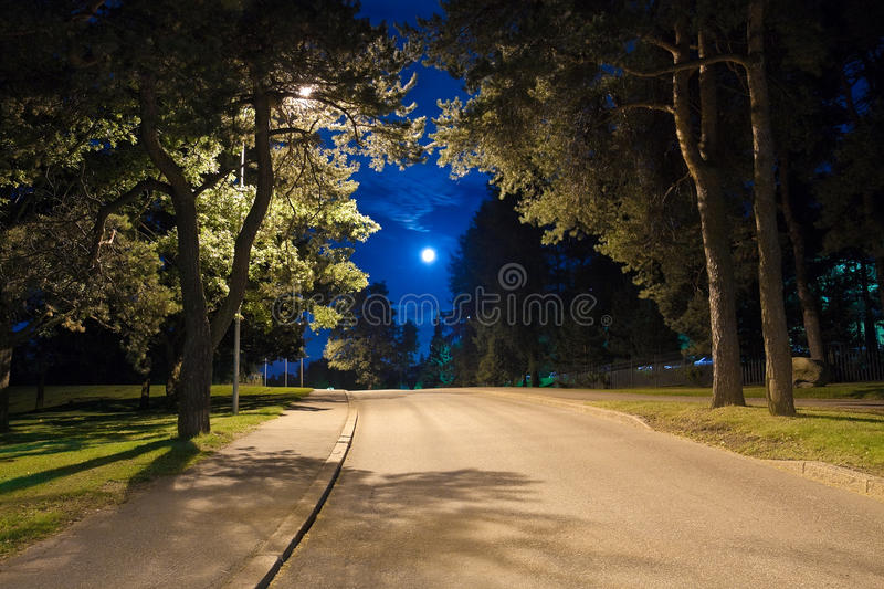 Night alley royalty free stock photos