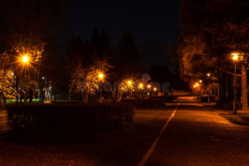 Night autumn alley in the park, illuminated by the warm light of. The lanterns royalty free stock photo