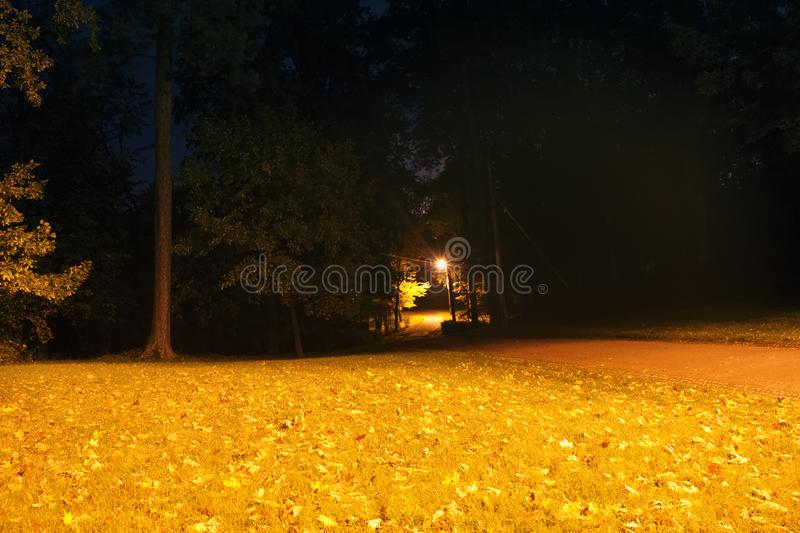 Night autumn Park with a lantern. The frightening darkness of the autumn Park royalty free stock image