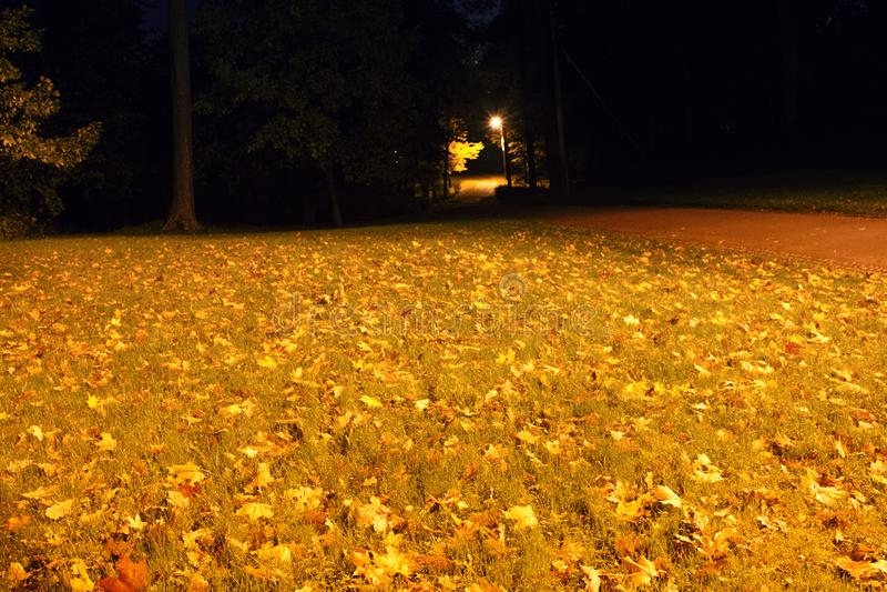 Night autumn Park with a lantern. The frightening darkness of the autumn Park stock photo