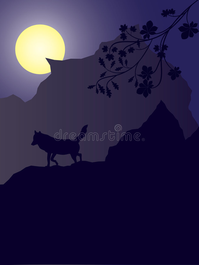 Download Night background stock vector. Image of background, moon - 9195959