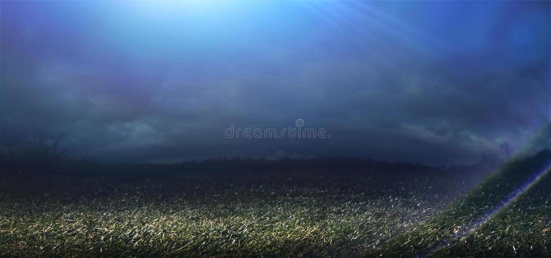 Night background. A blue spotlight illuminates the grass at night stock photo