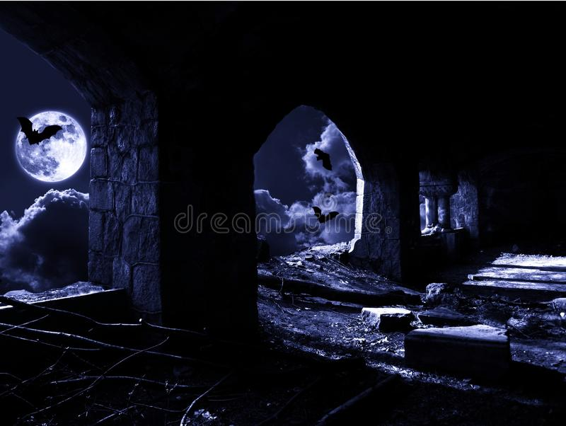 Night with bats royalty free stock images