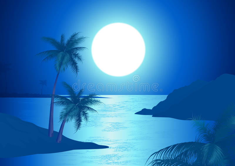 Download Night on the beach stock vector. Image of ocean, silhouette - 14869372
