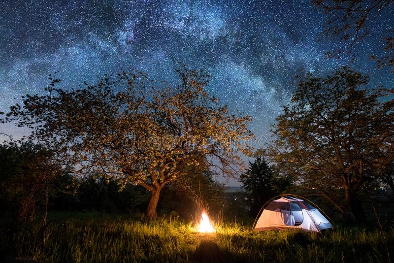 Night camping. Illuminated tourist tent near campfire under trees and night sky full of stars and milky way royalty free stock images