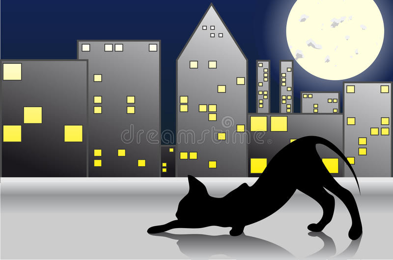 Download Night Cat Royalty Free Stock Image - Image: 19284666