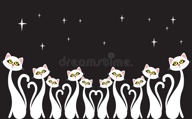 Night chorus. White chorus. Cat chorus. Illustration vector illustration