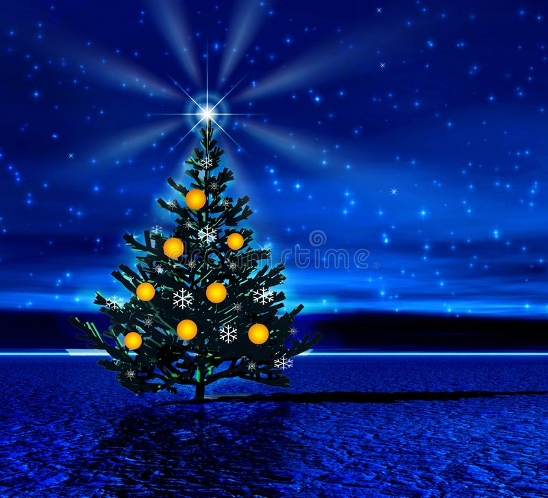 Night. Christmas tree. Light of star