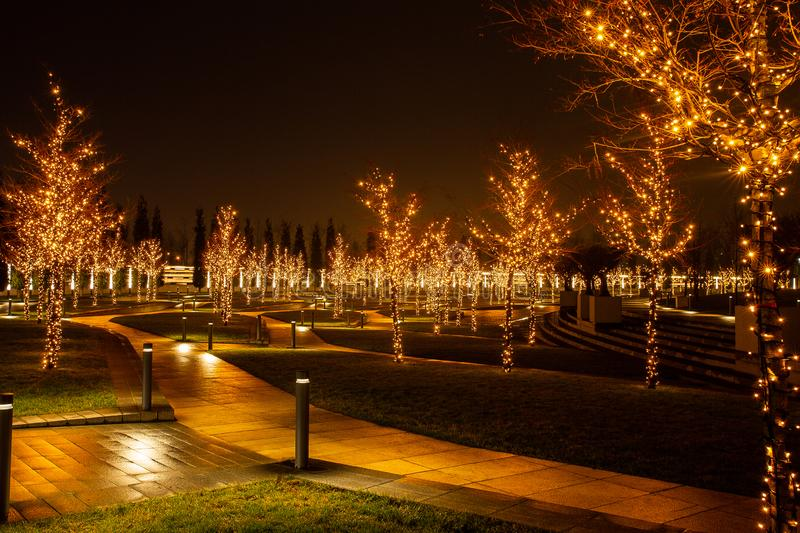 Night city park in the city of Krasnodar, Russia. The park is made in the same design style and contains a lot of geometry and. Rhythms. Stadium Krasnodar holds royalty free stock photos