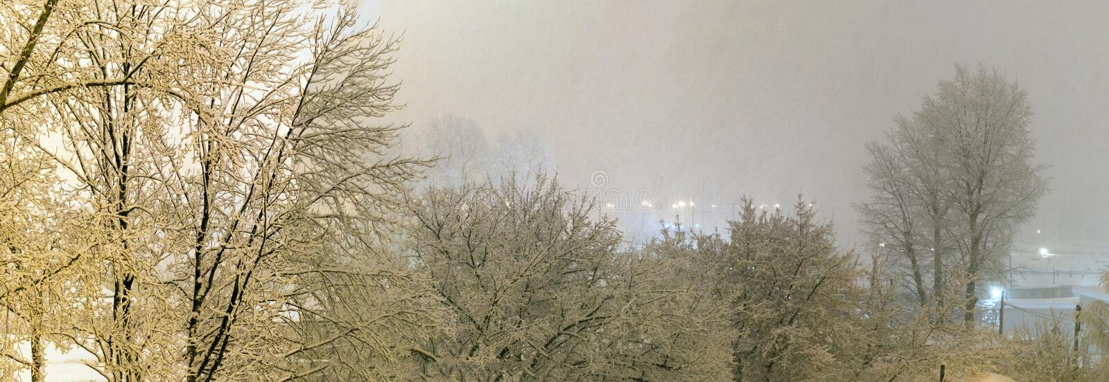 Night city under heavy snowfall. Trees and streets under flakes of snow. royalty free stock photography