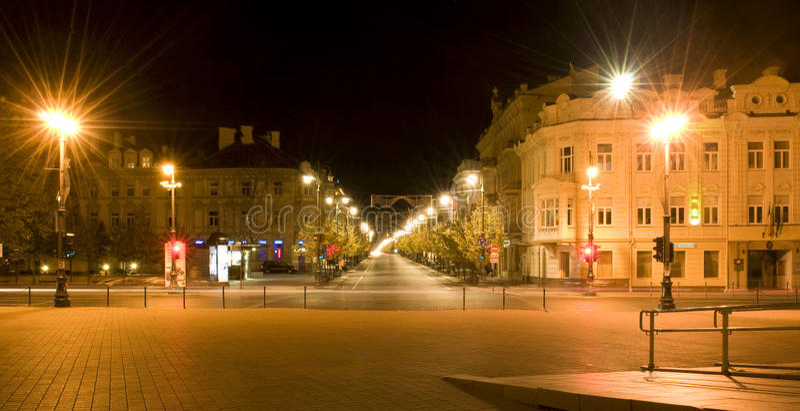 Night city. Vilnius. Lithuania