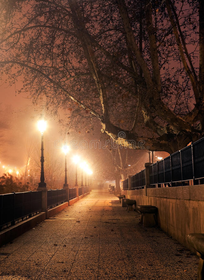 Night cityscape. Walk with street lamps at night cityscape stock photography