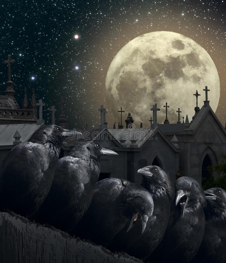 Night of the crows royalty free stock photography