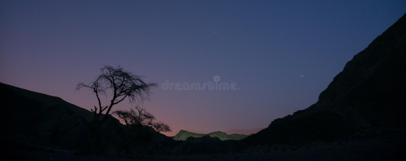 Night desert in Israel royalty free stock photo