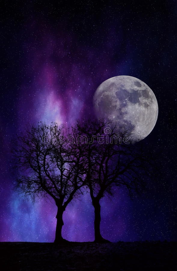 Night dream. Fantasy sky at night with trees silhouette moon and stars