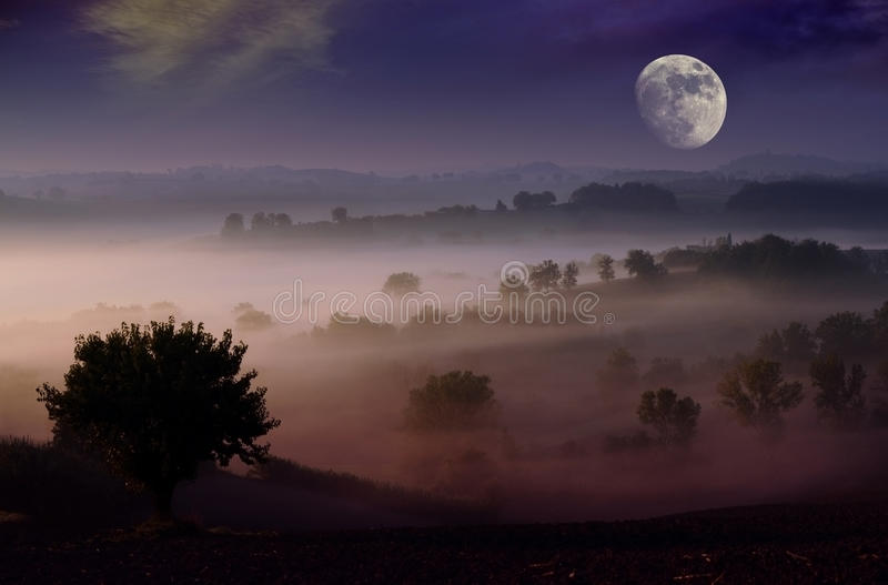 Night dream. Fog in the moonlight night scenery background