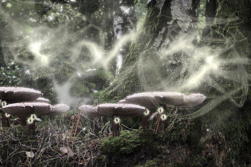 Night in the enchanted fantasy forest stock photography