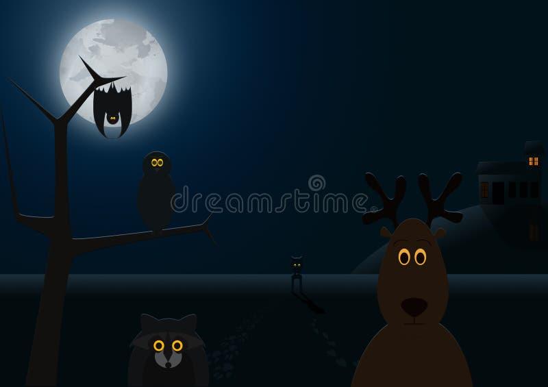 When Night Falls Stock Image