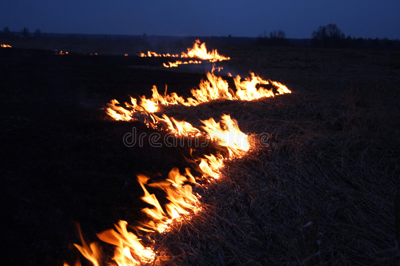 Night fire. In steppes royalty free stock photos
