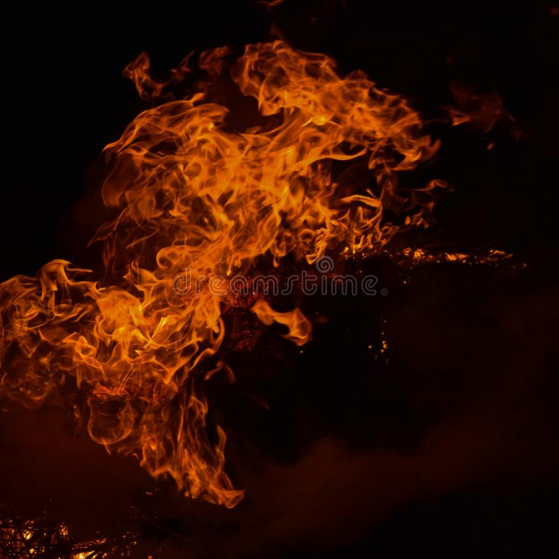 The night fire. Night fire. Burning of rice straw at night royalty free stock photo