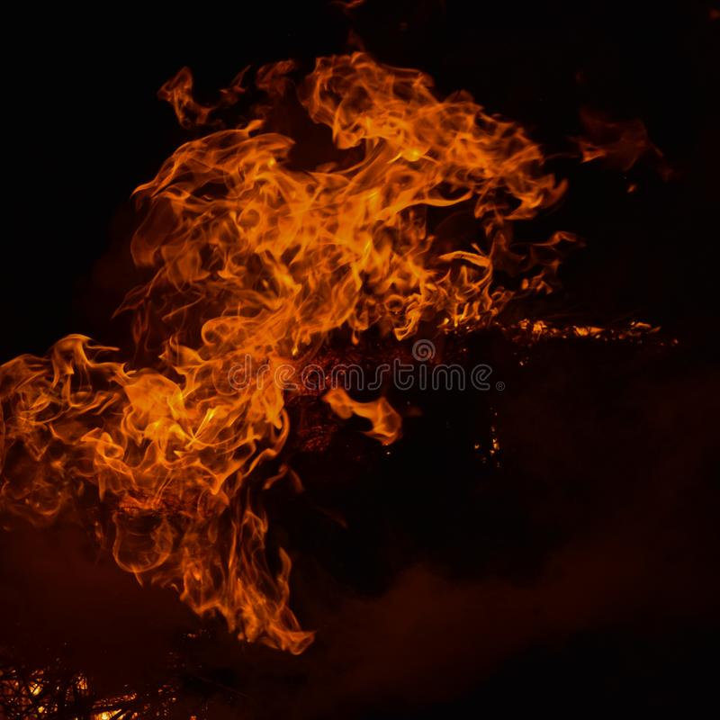 The night fire. Night fire. Burning of rice straw at night stock images