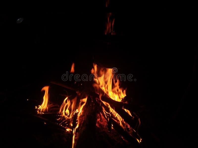 Night fire. Beauty fishing stock photos