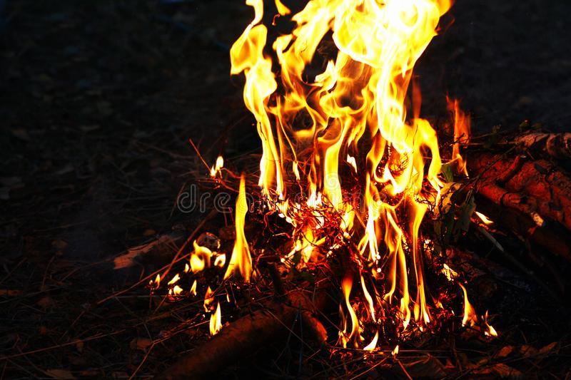 Night fire. A bright fire of wood and darkness royalty free stock images