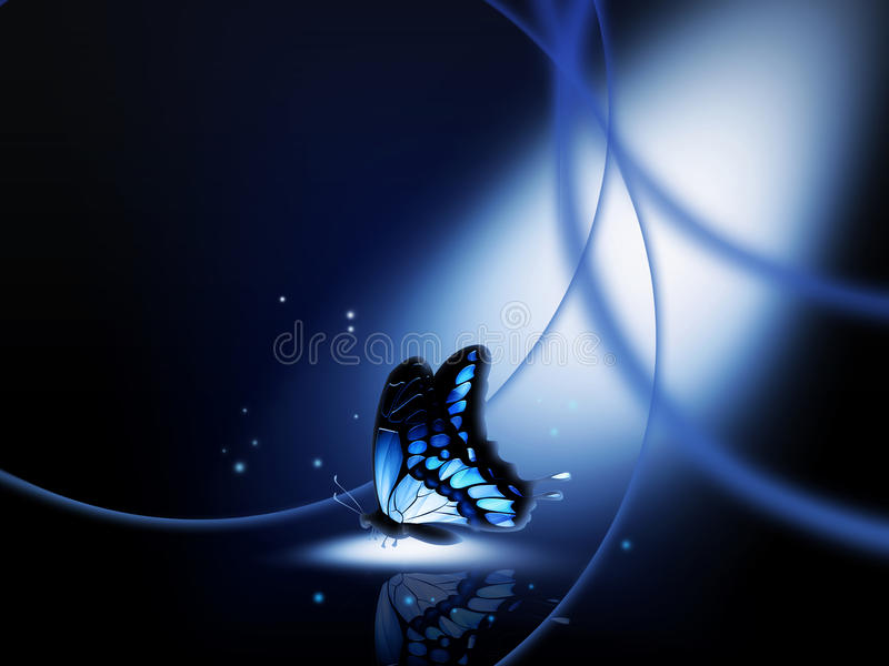 Night-fly
