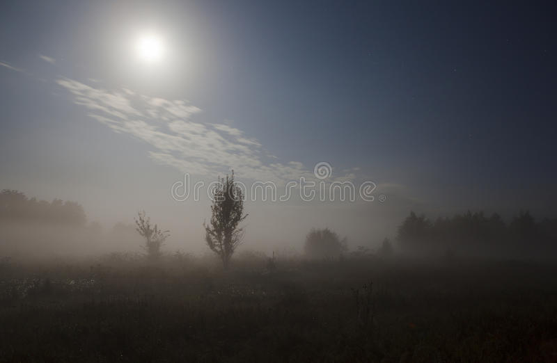 Night fog in the field stock photos
