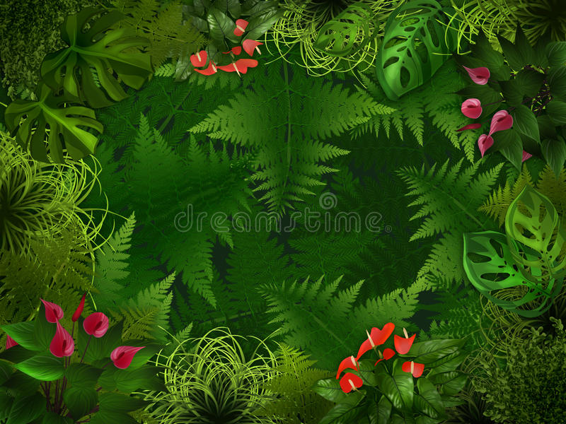 Download Night Forest Background Stock Photography - Image: 20019142